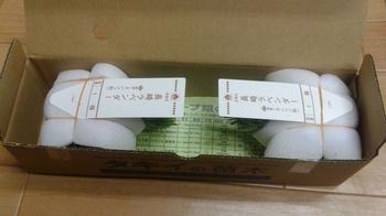 20190406-ラベンダー(長崎ラベンダー2).jpg